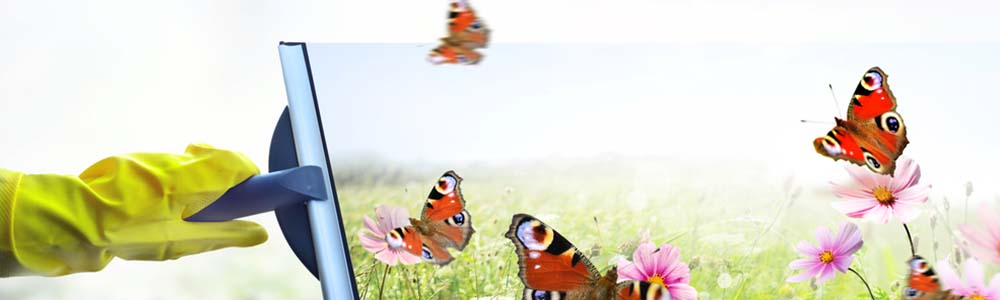 spring cleaning with butterflies